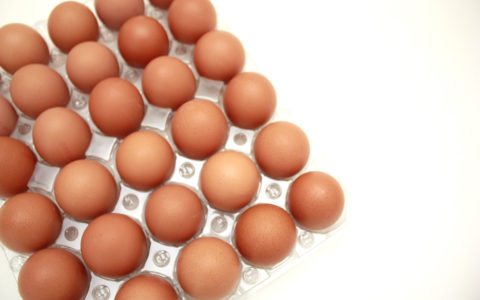luneta jaja podni uzgoj